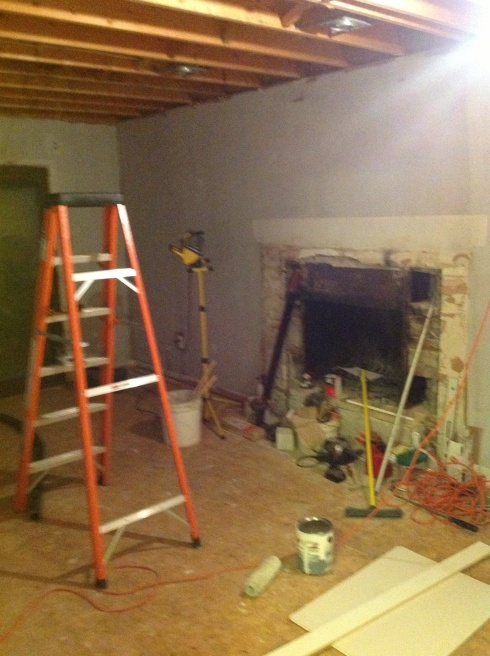 Family Room Reno