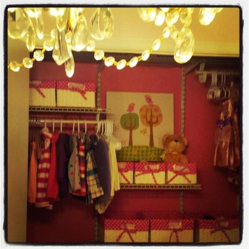 Fancy Little Closet!